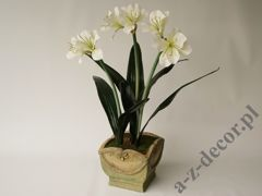 Amaryllis in pot 50x86cm [AZ02024]