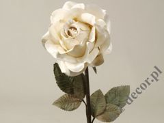 White antique rose 59cm [AZ01165]