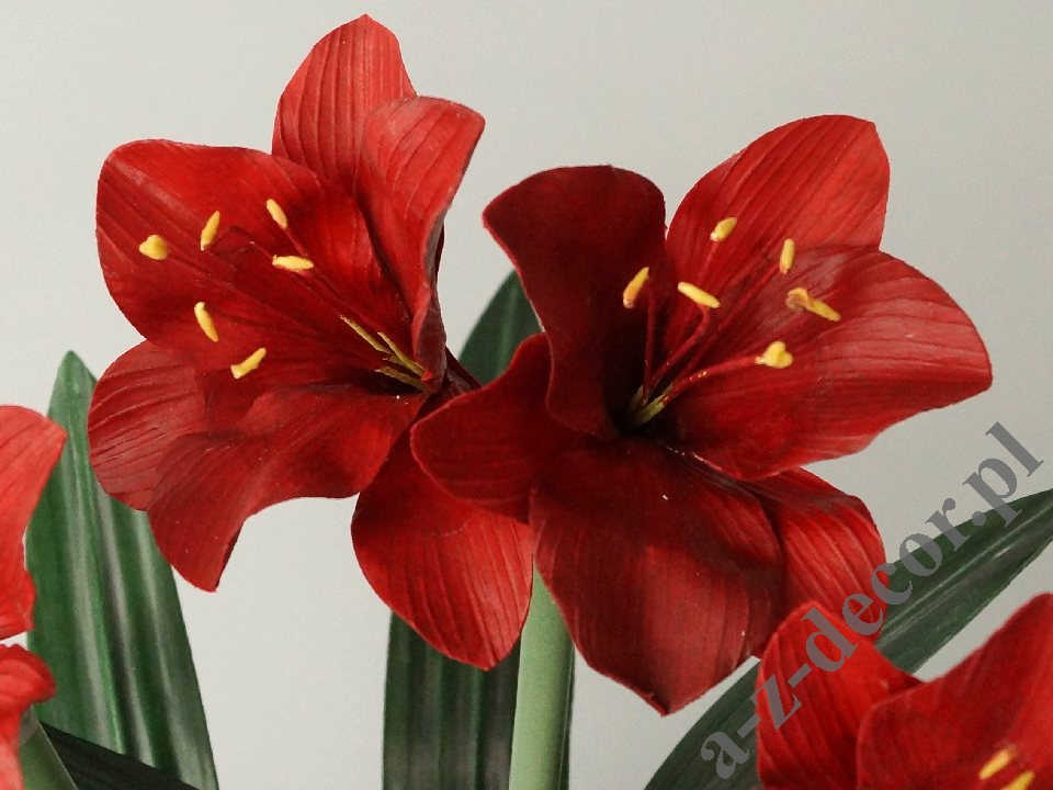 Amaryllis in black pot 45x75cm az02015 artificial for Pot amaryllis
