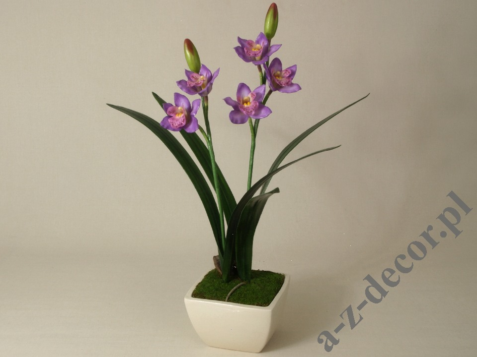 how to change orchid pot