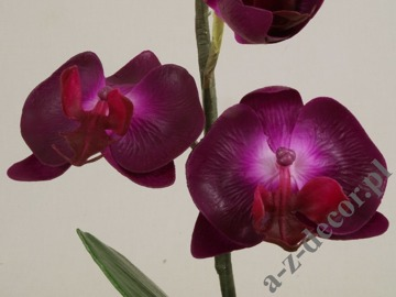 Artificial phalaenopsis in cup 36cm [AZ01139]