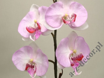 Artificial phalaenopsis in pot 55cm [AZ01855]